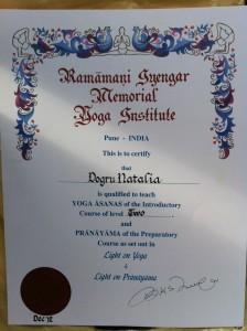 Özel İyengar Yoga kursu